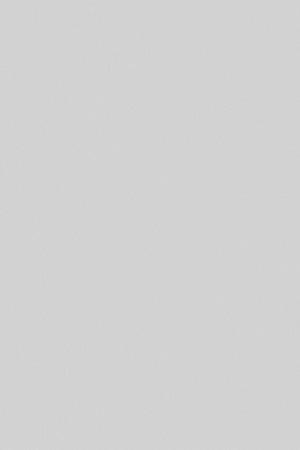F6466 lys grå