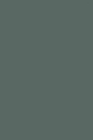 Fenix0750 grøn